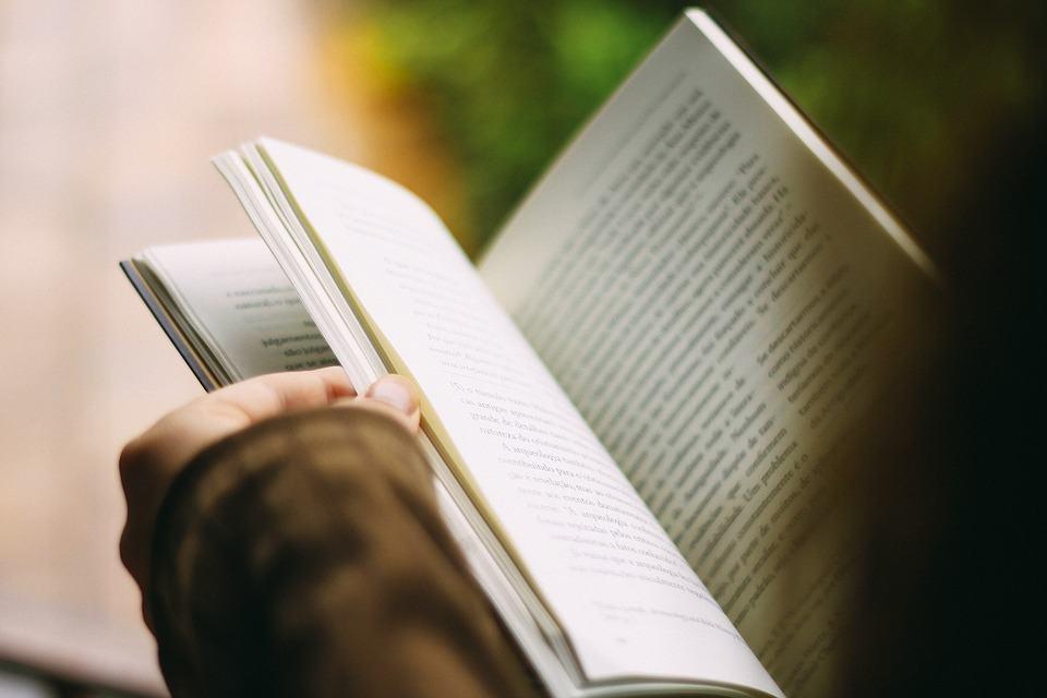 Livro nerd