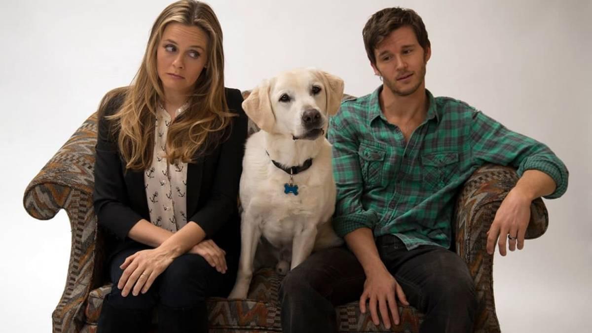 Cartaz do filme Um Cachorro para Dois