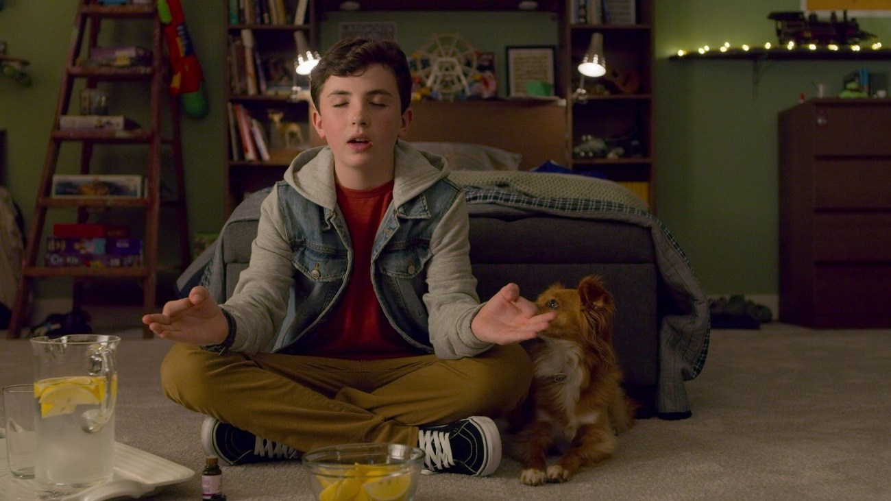 Cartaz do filme Dude, O Cãopanheiro