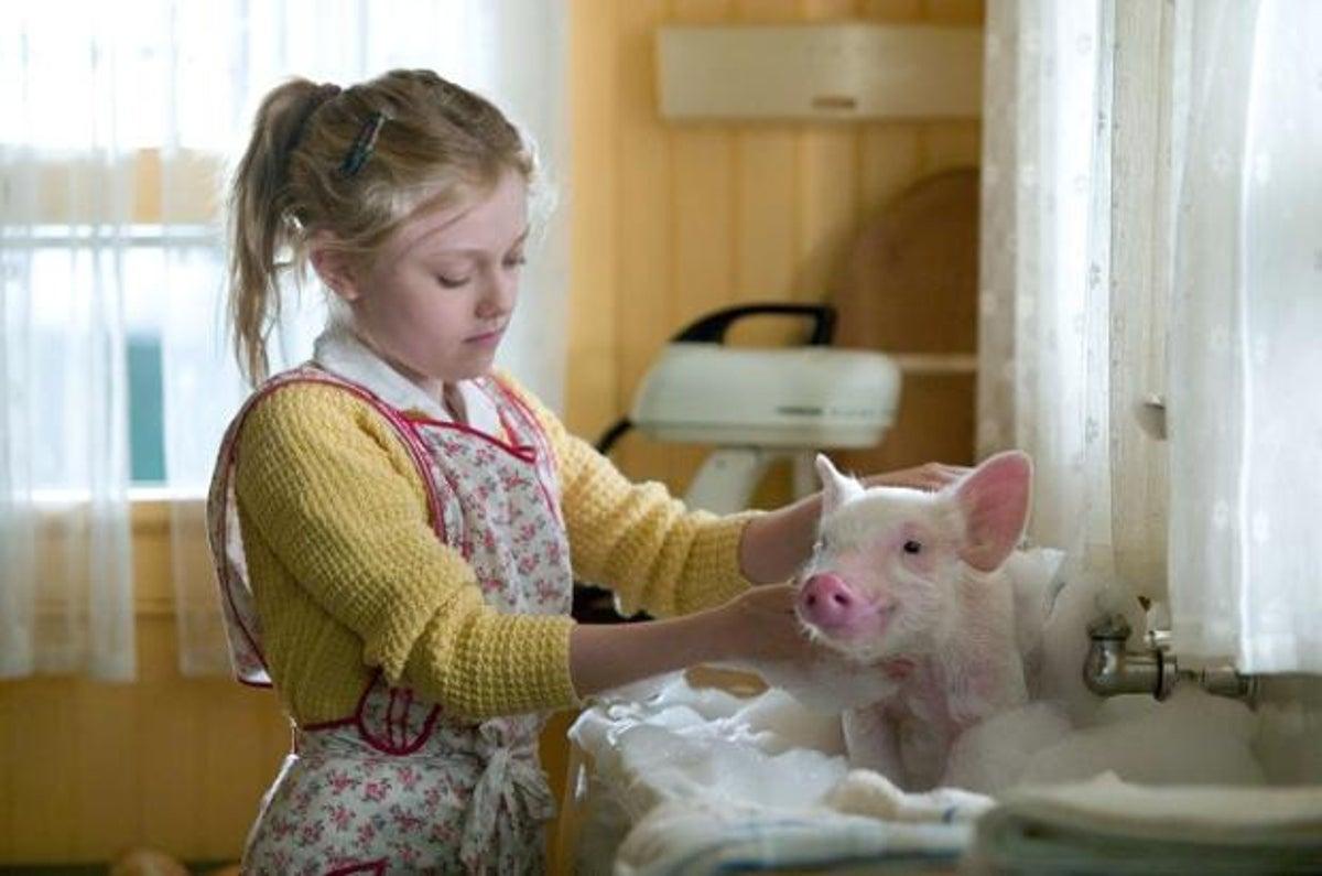 Filme A Menina e o Porquinho