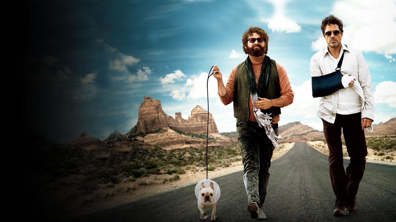 Cartaz do filme Um Parto de Viagem - O Filme