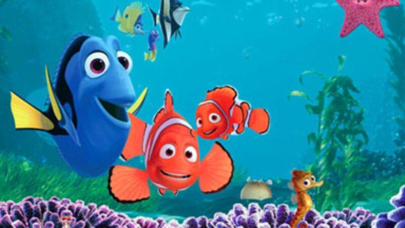 Procurando Nemo | É bom e Vale a pena Assistir? Confira Trailer, Sinopse e mais