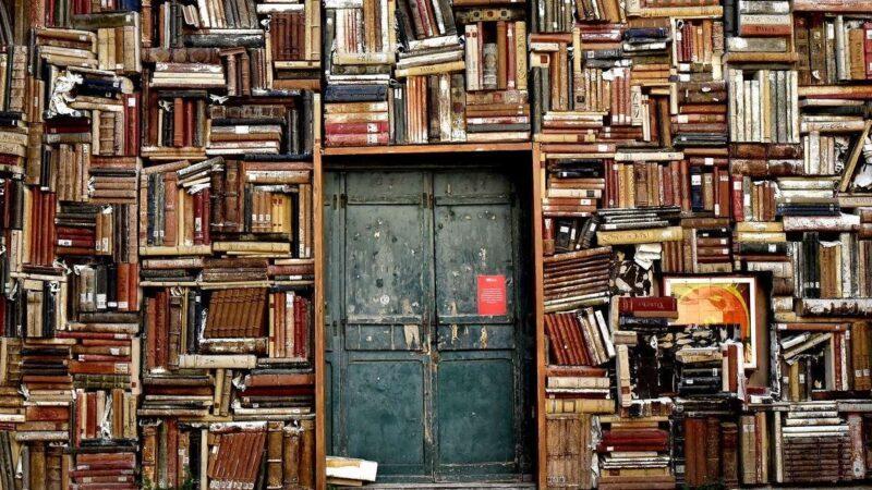 Como ler mais livros: Veja 5 dicas práticas para ler mais